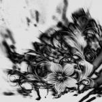 Carmen Mölders - Blumenwelt