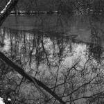Mario Krechel -Winter-Schwermut