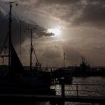 Reiner Grasses - Hafenszene
