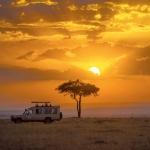 Frank Spiegel - Masai Mara at sunset