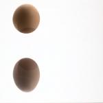Uwe Sälzle - Ein Ei