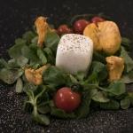 Kerstin Schütze - Salat