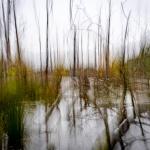 Heiner Ott - Groovsche Loch