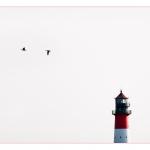 Bärbel Brechtel Leuchtturm
