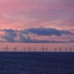 Mario Krechel - Windpark Skandinavien