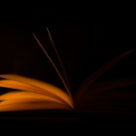 Antje Terhaag – Buch
