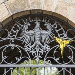 K.-H. Romann Die Vögel
