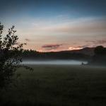 K.-H. Romann Nebel am Waldrand