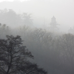 Helga Hansmann Nebel im Wald