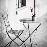 platz-2_ng_02_einsame_orchidee_tn