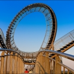 ms_02_tiger_and_turtle_tn