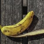 2013_12_a2-gst_02_banane-auf-bank_tn