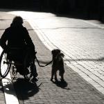 2014_07_platz-5_f1_axb1_handicapped