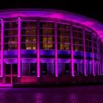 Pink Palast