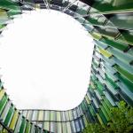 Nils Gröblinghoff - Blick in den Himmel