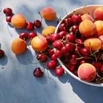 Rainer Ohligschläger - Stillleben mit Kirschen und Aprikosen