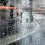 Bärbel Brechtel - Regen