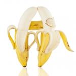 2013_12_platz-2_g2-ng_02_kissing_bananas_tn