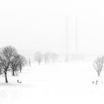 Antje Terhaag – Winter Wonderland