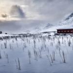 Bäbel Brechtel - Der Schnee ist noch in der Luft